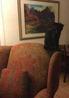 Westin's Chair 2